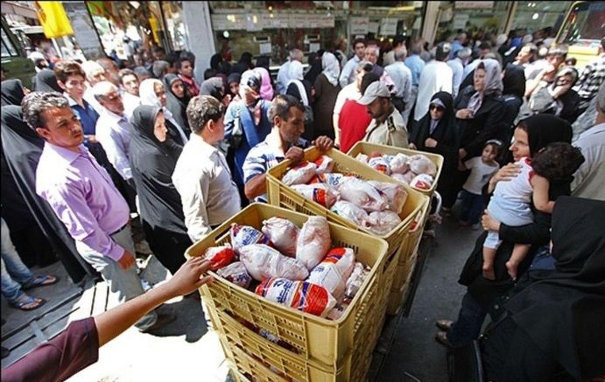 قیمت شکنی مرغ در بازار امروز + جزئیات