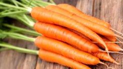 پشت پرده گرانی قیمت هویج