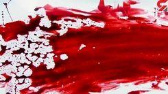 ۵ سال بعد از قتل مادر در نارمک تهران / زندگی با جنازه پدر