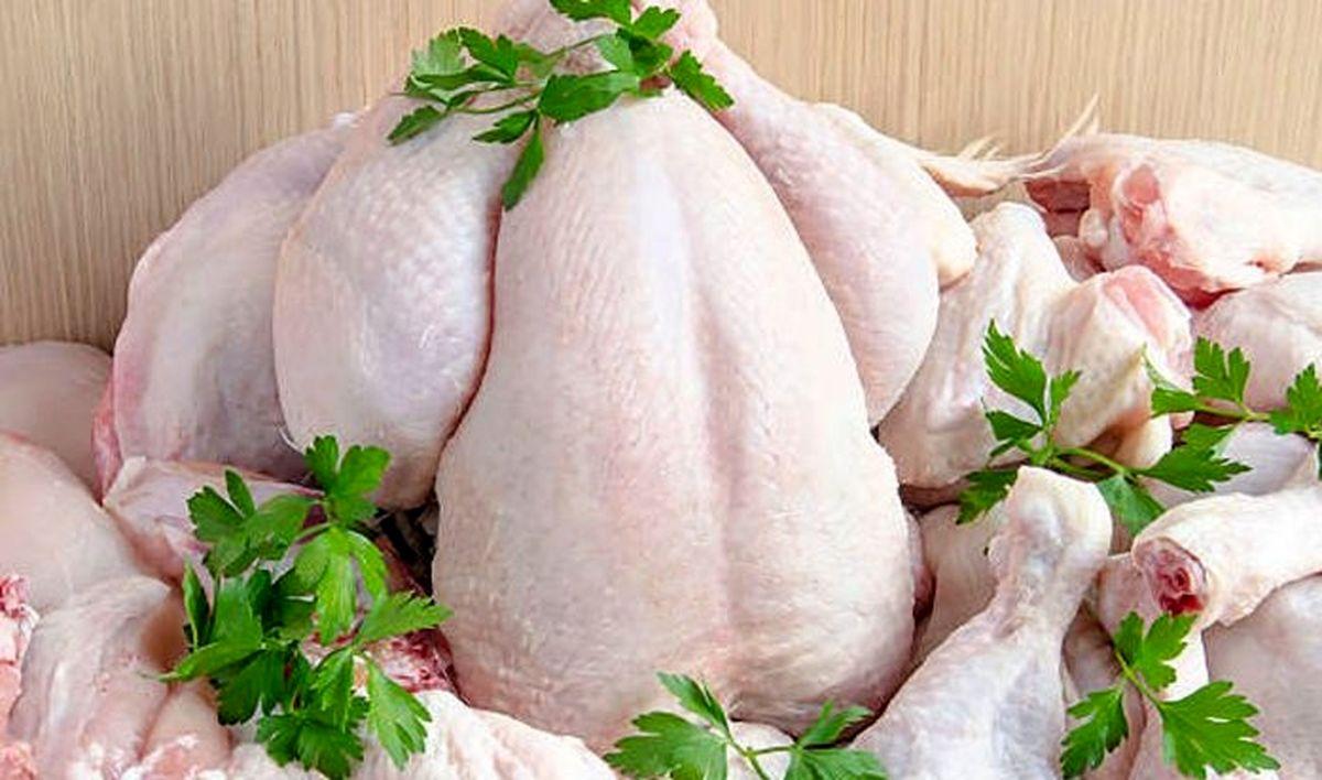 قیمت مرغ روز در بازار 8 دی 99 / استمرار روند کاهشی قیمت + جزئیات مهم