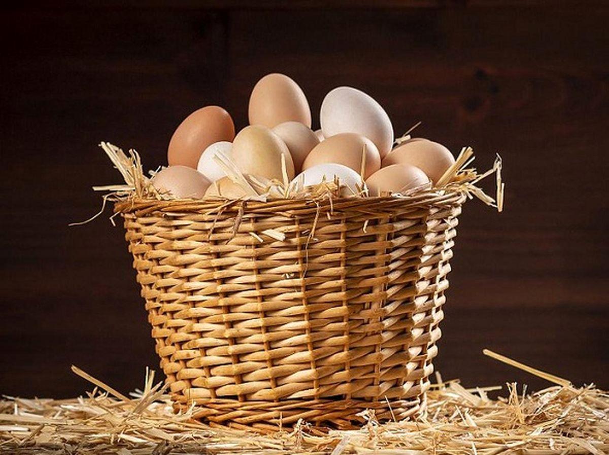 قیمت مرغ در بازار امروز (۱۴۰۰/۰۱/۳۰) + جدول