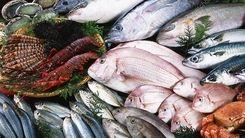 قیمت باور نکردنی ماهی در شب یلدا + جزئیات