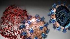 کرونا ویروس موج بعدی اقتصاد جامعه را فلج می کند 13 دی 99 + جزئیات مهم
